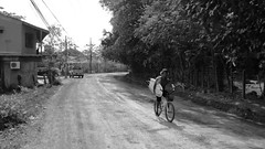 Costa Rica Bicycles 18