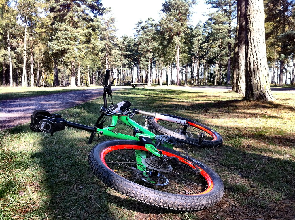 Orange Five S at Cannock Chase
