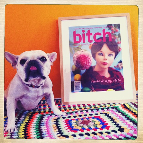 taste and appetite cover shows a wig head looking at a piece of plastic fruit. The framed print sits on the ground in front of an orange wall with Kelsey's French Bulldog, Edith, sitting nearby