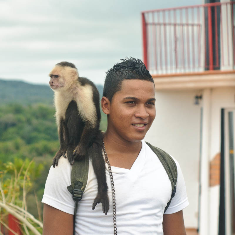 Monkey on My Shoulder