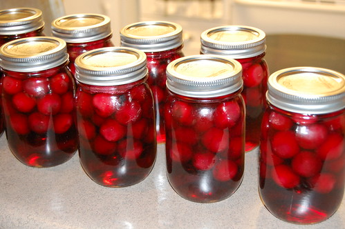 whole canned cherries