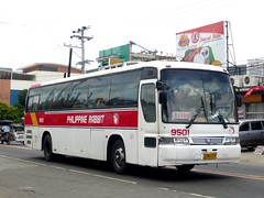 Granbird of Rabbit (bentong 6) Tags: bus rabbit avenida line baguio kia philippine sd1 9501 granbird