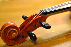 Violin (kubotake) Tags: gear violin