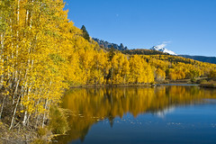 SanJuanSkywayLake_3424_2008October06PM (kathyv) Tags: blue autumn trees sky orange lake snow mountains color reflection tree fall water leaves yellow spectacular mirror leaf october san colorado branch juan branches foliage covered aspens cushman sanjuanmountains skyway quaking 145 gettyjuly2011