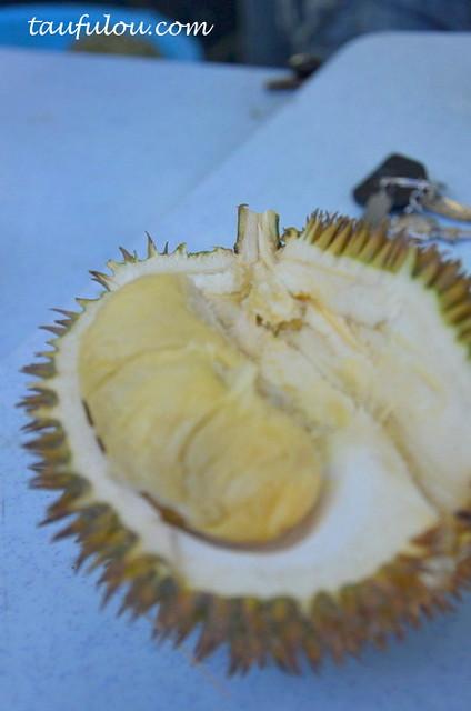 durian part 2 (2)
