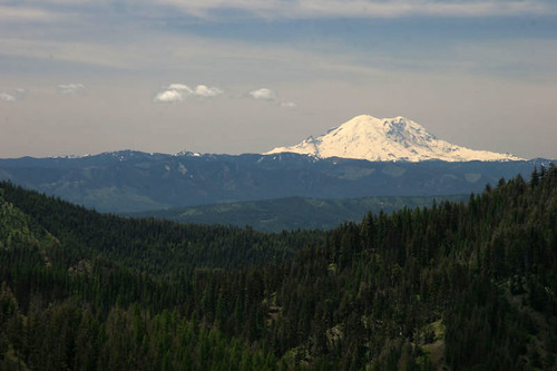 Mt Rainier from the Saddle