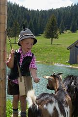 Tiere im Naturpark Almenland (Naturpark Almenland) Tags: wandern im naturpark almenland teichalm sommeralm ziege junge