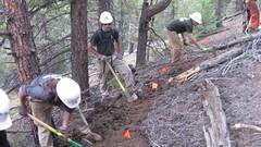 IMG_1862 (scrumtrulescent) Tags: camping mist fire colorado hiking chainsaw trail spike nalgene stihl rampartrange ponderosapine pikenationalforest beetlekill s212