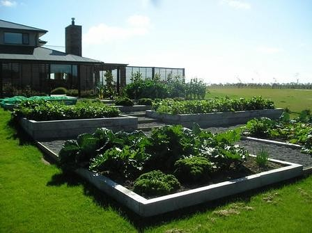 The Worlds newest photos by The vegetable garden project