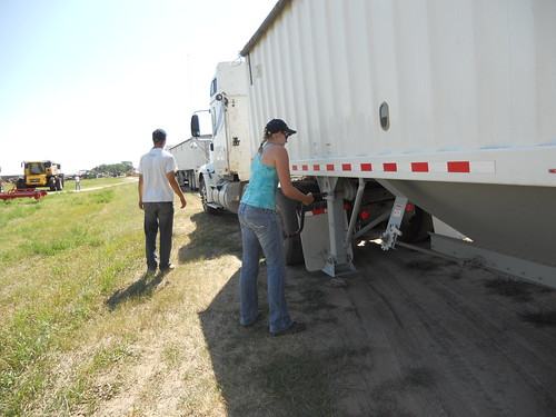 Dollying trailer