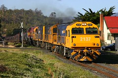 2137 at Campania (Trains In Tasmania) Tags: campania australia tasmania 31 ee papertrain englishelectric mka tasrail pacificnational mkaclass