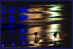 Wet feet (Clearvisions) Tags: sea night reflections waves wetfeet clearvision clearvisionsphotography clearvisions