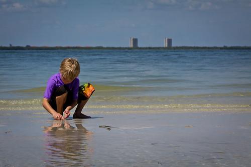 jellyfish rescuer 2
