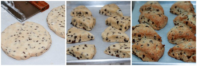 Chocolate Chip Cream Scones collage 1