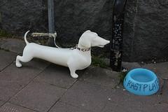 Rest area Sweden (Ankar60) Tags: summer dog white design sweden swedish dachshund hund area rest tax sverige svensk sommar smrgsbord vit rastplats vattenskl