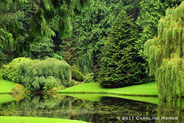 Mid Pond