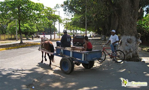 Granada Nicaragua Mode Of Transportation Horses