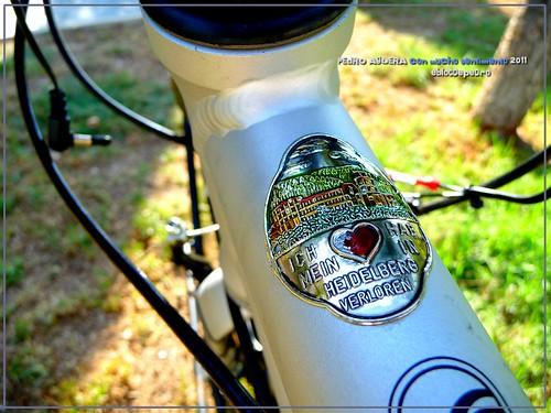 Bicicletas listas para hacer el Camino 5992121000_e5f840a549
