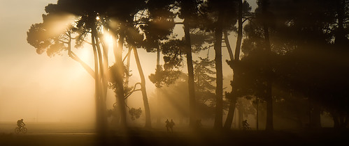 "Misty Hagley Park sunrise 3 • <a style=""font-size:0.8em;"" href=""http://www.flickr.com/photos/45056616@N00/6004341681/"" target=""_blank"">View on Flickr</a>"