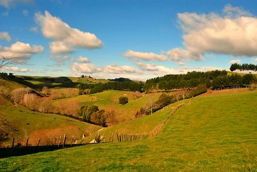 NZ_farm_1