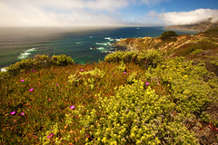 Big Sur (chatursunil) Tags: ocean california road flowers blue red sea summer sky cliff usa cloud mountain seascape flower color green beach nature water grass rock fog clouds landscape outdoors photography one 1 bay coast monterey big highway surf waves pacific outdoor hill central scenic hills coastal carmel sur coastline