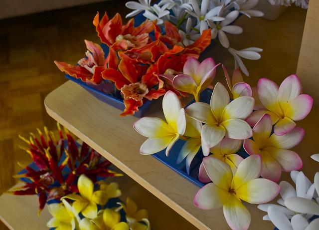 Maui_Flowers