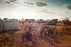 outskirts of IFO camp in dadaab