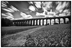 59 365 (PeterChinnock) Tags: bw white black field 30 clouds silver project landscape sussex moving corn long exposure day shot monotone viaduct filter heath nd pro daytime 365 balcombe 59 foreground haywards secs efex nd110 peterchinnock