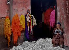NO PHOTOS PLEASE (MOROCCO  MARRAKESH) (KAROLOS TRIVIZAS) Tags: man wool colors oldman morocco workshop worker marrakesh dyeing fibers moroccan digitalcameraclub