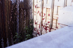 LERK 97 (QsySue) Tags: bridge slr graffiti losangeles nikon downtown tag landmark tags 35mmfilm eastlosangeles eastla 50mm118 colorfilm nikonfg20 lerk 35mmfilmcamera cesarchavezbridge fujisuperhgii200