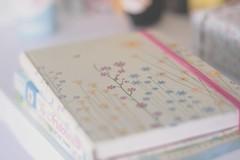 225/365 My new diary (Honey Pie!) Tags: days honey 365 365days 365daysproject 365dias 365daysofhoney