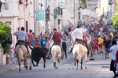 Bandido (kat's here) Tags: horse cheval caballos bandido chevaux abrivado perols fetevotive gardians