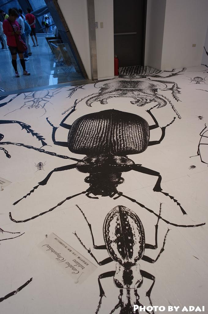 2011.10.1 蘭陽博物館_GXR28