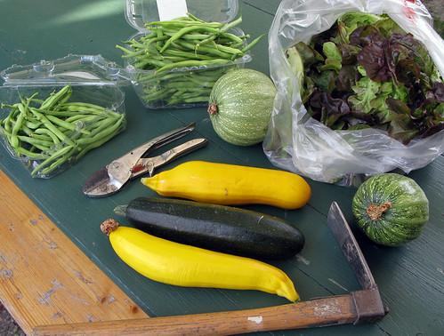 Gartenernte am 9. Juli 2011