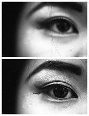 Lily (mattbellphoto) Tags: blackandwhite bw macro film 35mm lily delta pedro nikonf2 ilford pushprocess xtol 105mmf28