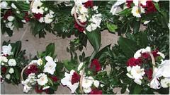 110708_flowerbaskets