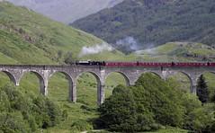 Glenfinnan viaduct (IrenicRhonda) Tags: game public geotagged scotland highlands unitedkingdom july escocia pre done lochshiel glenfinnan schottland ecosse lochaber gbr 2011 gamewinner highlandsandislands p4m redbubble lascozia gleannfhionnainn pregamewinner caolandmallaigward 8july2011 geo:lat=5687090333 geo:lon=543443333