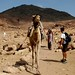 Escalada de 1.000m até o topo do Mt. Sinai