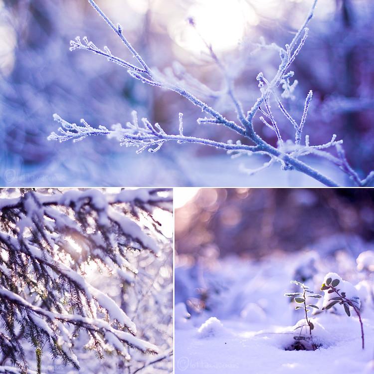 finsk vinter