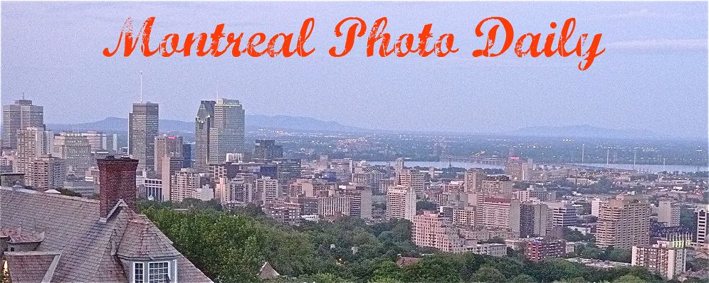 Montreal Photo Daily