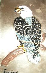 P1010862 (Paco Chalkini's) Tags: flickr handmade copper copperplate eagel αετόσ χαλκόσ χαλκογραφία