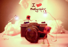 I love photography (GordanMes) Tags: camera pink light shadow red en blur art love glass rose yellow metal clouds canon painting de lens rouge photo al bottle wire funny die comic power wine lumire cigarette like fil style mini cigar humour coton story cap amour strip alcohol hate flare eggs histoire 5d vin doggy nuages chanel liege blanc minimalist cigare retard fer bonhomme minature appareil verre oeufs oeuf capone bouchon caracter bande parfum haine egges scne mise puissance dessine papirer