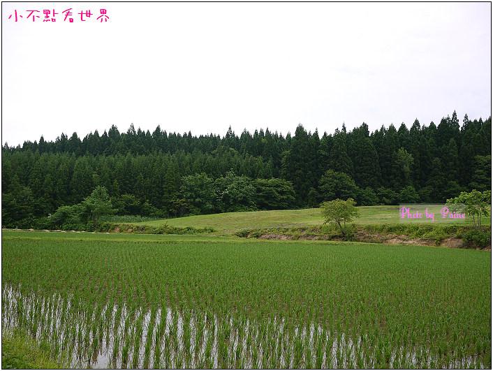 綠之風民宿-42.jpg