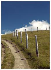 la via attorno al mondo / the walkway around the world ({fuzzonce}) Tags: sky mountain grass clouds way nuvole erba walkway cielo tuscany toscana pali sentiero montagna appennino nubi orsigna
