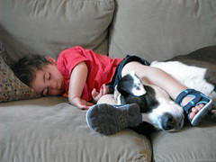 Zonked (russteaches) Tags: sleeping two dog pet baby cute feet kids out puppy children nose dangerous toddler child buddies sweet beware sleep slumber pitbull explore pup wwe wwf bestfriends tuckered zonked fearsome explored figurefourheadlock