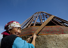 Woman Helping Putting Up A Yurt, Saralasaz Jailoo, Kyrgyzstan (Eric Lafforgue) Tags: wood people woman building smile smiling horizontal female person one wooden asia exterior veiled veil headscarf headshot tent canvas hut pasture frame yurt housing centralasia kyrgyzstan humanbeing nomads oneperson colorphoto headandshoulders kyrgyzrepublic puttingup 1376 nomadiclifestyle saralasazjailoo
