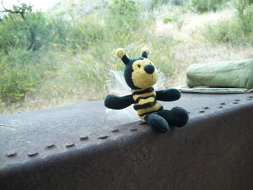 Guest Star Lite Bee