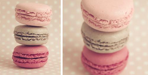 Macaron by Vanina Vila {Photography}