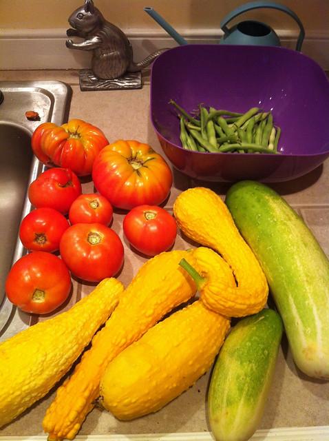 helluva haul today.  FINALLY, tomatos.