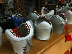 Shark Buckets